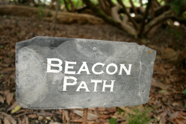 Beacon Path Gardens of Heligan