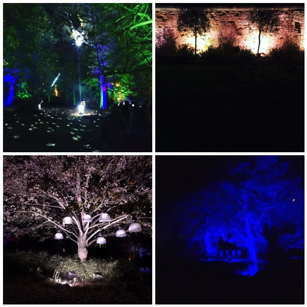 Enchanted Woodland Syon Park 2016